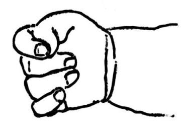 baby fist