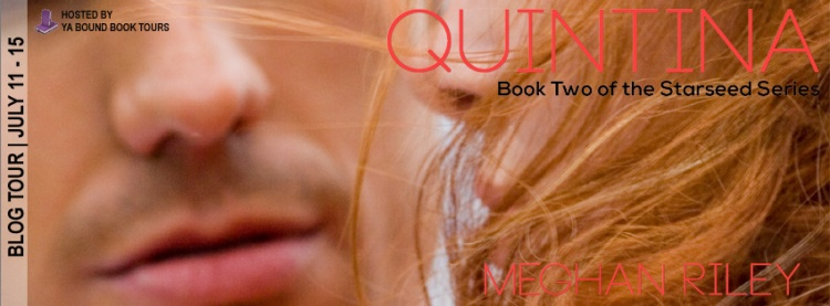 Quintina tour banner copy