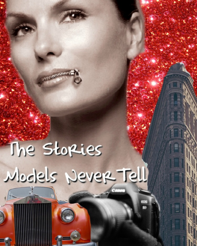 The Stories Models Never Tell